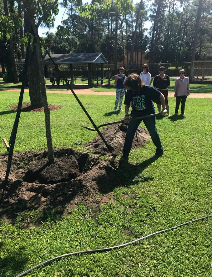 picture of Arbor Day tree planting 2018